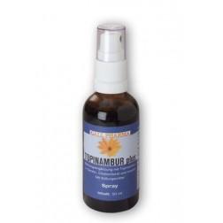 GPH Topinambur Plus Spray-100 ml
