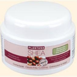 Plantana Shea-Butter Gesichts-Creme 50ml