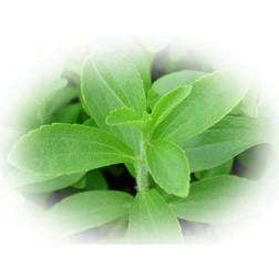 Stevia Granulat Premium 200g
