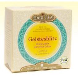 Doskar Hari Geistesblitz Tee 16 Beutel