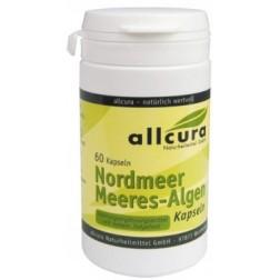 Allcura Meeres-Algen Kapseln 100MCG JOD (Nordmeer)