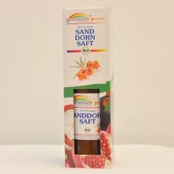 Regenbogen Bio Sanddorn Saft