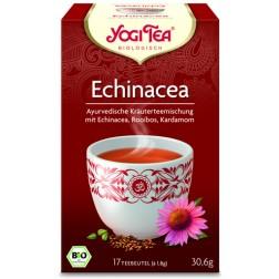 Yogi Tee Echinacea