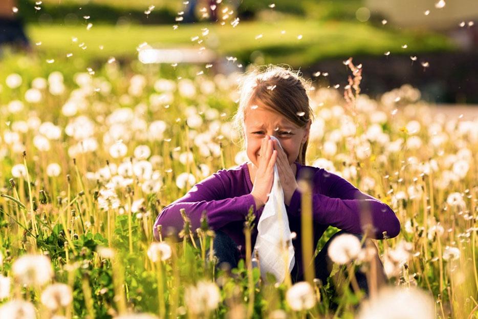 Allergien – was gibt es Neues in der Behandlung